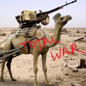 camel war